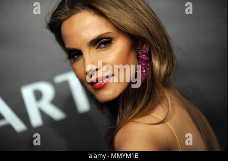 NEW YORK, NY - OCTOBER 23:  Amy France arrives at Gabrielle's Angel Foundation's Angel Ball 2017 at Cipriani Wall Street on October 23, 2017 in New York City  People:  Amy France - Stock Photo