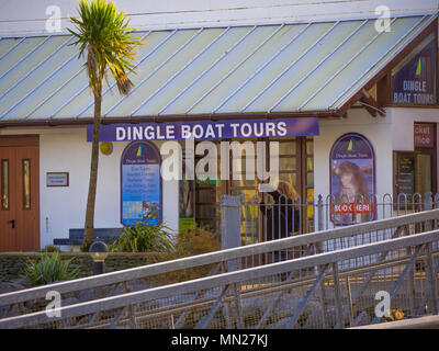 Dingle Boat Tours in Ireland - Stock Photo