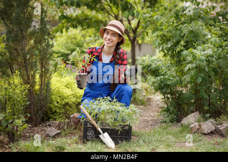 woman gardener holding seedling of tomato - Stock Photo