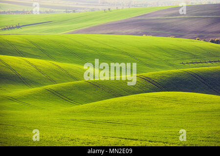 sunset lines and waves in the spring - Stock Photo