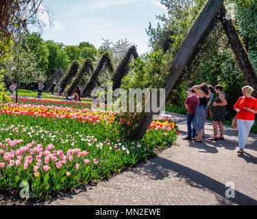 Britzer Garten, Neukölln, Berlin, Germany. 2018. Garden with spring flowering bulbs, People walking on path among Colorful tulips.                     - Stock Photo