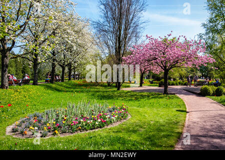 Britzer Garten, Neukölln, Berlin, Germany. 2018.Garden wiew with pink & white blossom trees, spring flowers, path and people walking and sitting - Stock Photo