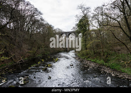 Camps viaduct spanning the river Almond in Almondell & Calderwood Country Park - Stock Photo