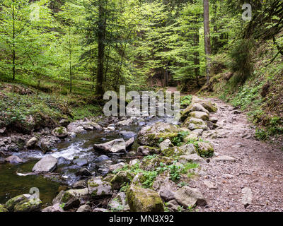 Hiking path with bridge in Ravenna gorge, near Hinterzarten, Black Forest, Baden-Württemberg, Germany - Stock Photo