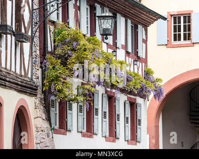 Village Burkheim near Freiburg, Breisgau, Baden-Würtemberg, Germany - Stock Photo