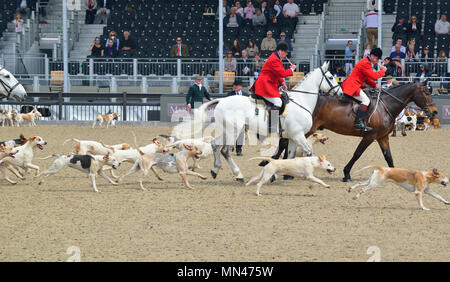 Windsor Castle, UK. 13th May, 2018. Windsor Castle, UK. 13th May 2018. The Royal Windsor Horse Show at Home Park Private Windsor Castle UK Meet of Hounds Credit: Gary Blake /Alamy Live News - Stock Photo