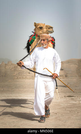 Ibri, Oman, 28th April 2018: men with their camels on a countryside of Oman - Stock Photo
