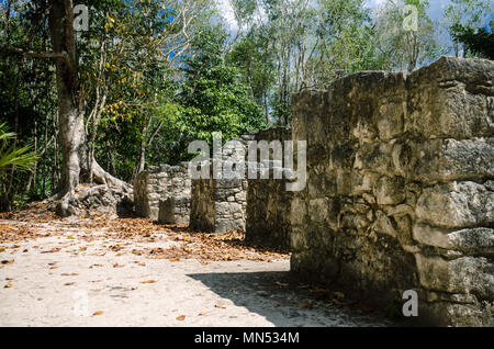 Ancient structures of the ancient mayas in Coba, Mexico - Stock Photo