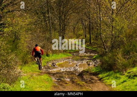 Puy de Dome (63) VTTiste roulant sur un chemin boueux // France. Puy de Dome (63) Cyclist on a muddy road - Stock Photo