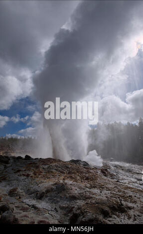 Steam phase of a major eruption of Steamboat Geyser on May 13 2018 - Stock Photo