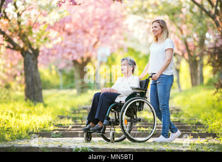 Elderly grandmother in wheelchair with an adult granddaughter on a walk outside in spring nature. - Stock Photo