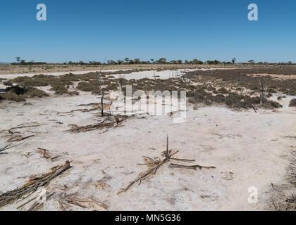 Landscape around the Wave Rock with salt lakes under clear sky, outback of Western Australia - Stock Photo