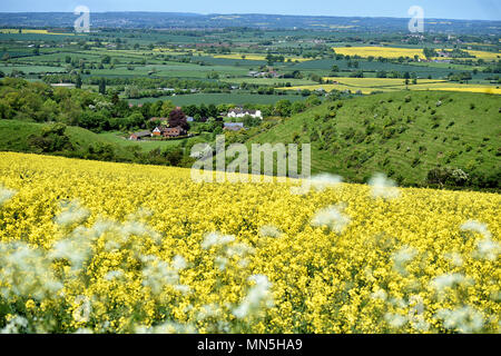 Looking down on the village of Edington in Wiltshire during the month of May from the Salisbury Plain - Stock Photo