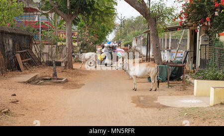 Kanadukathan, India - March 12, 2018: Street scene in the Chettinad region. Enjoying a sacred status in Hinduism, cows wander freely here as elsewhere - Stock Photo