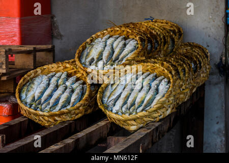 In the fishing village of Tomnub Rolork, we see how the fish is prepared for its exhibition and sale. Sihanoukville, Cambodia - Stock Photo
