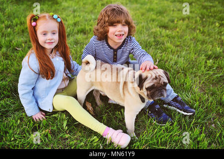 boy and girl playing in park on grass with dog of pug breed. - Stock Photo