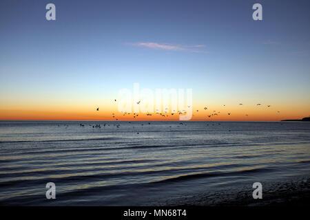 Sunrise on the eastern coast of Argentina, at Puerto Madryn, Chubut Province, Argentina, Patagonia. - Stock Photo