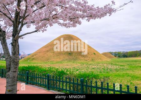 Tomb with cherry blossom durign Spring season at Gyeongju city of South Korea. - Stock Photo