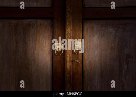 Old wooden dark brown doors close-up with golden lion knobs vintage design antique - Stock Photo