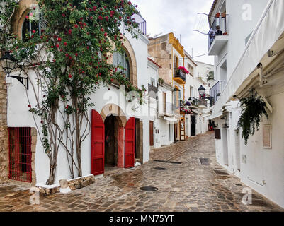 Charming empty cobblestone white-washed street of old town of Ibiza (Eivissa). Blooming ivy with red flowers on a house wall. Balearic Islands. Spain - Stock Photo