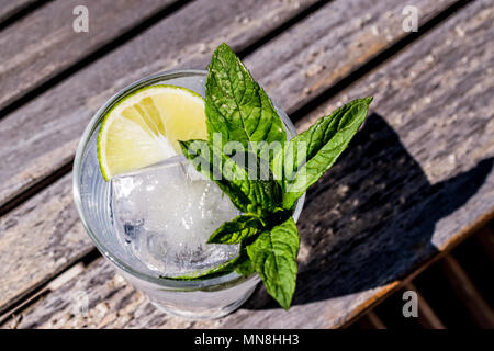 Vodka or Gin Tonic Cocktail with lime, mint leaves and ice at the garden (natural light). Beverage Concept. - Stock Photo