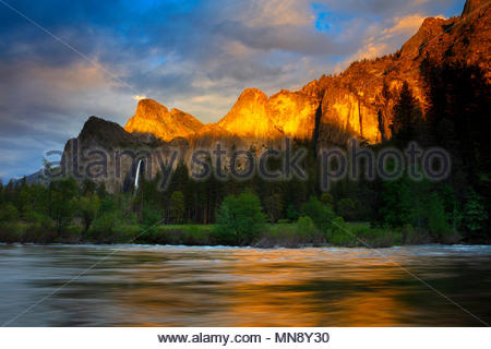 The golden light of sunset reflects off several Yosemite peaks, including the Leaning Tower and Dewey Point, onto the Merced River at Valley View in Y - Stock Photo