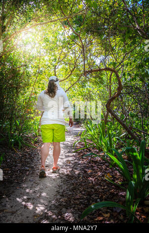Woman is walking through a forest on a small island in the Caribbean - Stock Photo