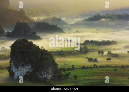 Doi Phu Lang Ka Phayao, Thailand, mountain is mist on morning - Stock Photo