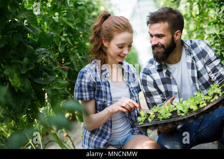 Two young smiling people working in greenhouse with sprouts - Stock Photo