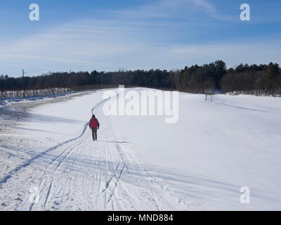 Winter landscape with snow and ski tracks, lone man crossing an open field on foot in Bygdoy Oslo Norway - Stock Photo