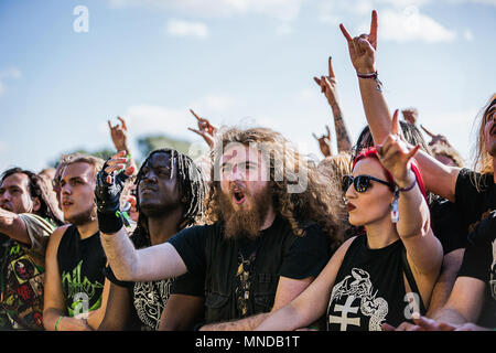 Music festival crowd. Heavy metal music festival crowd watching with horns in the air - Stock Photo