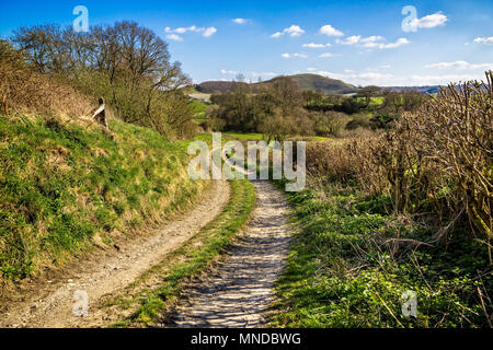 Tranquil British countryside - Winding lane leading to Cley Hill in Wiltshire, - Stock Photo
