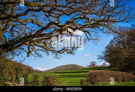 Tranquil English countryside - farm land leading to Cley Hill in Wiltshire - Stock Photo