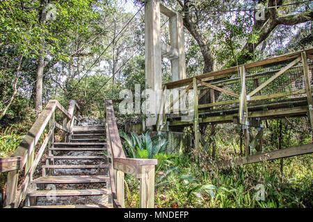 Ravine Gardens State Park in Palatka Florida Stock Photo: 185308307 ...