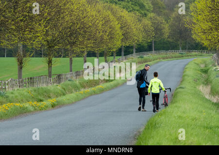 Tired after long cycle ride, father & son are walking & pushing their bikes along scenic country lane - near Ilkley, North Yorkshire, England, UK. - Stock Photo