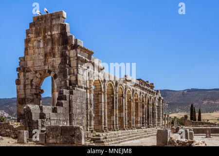Ruins of the roman basilica of Volubilis, a UNESCO world heritage site near Meknes and Fez, Morocco - Stock Photo