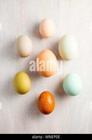 Various coloured eggs - Stock Photo