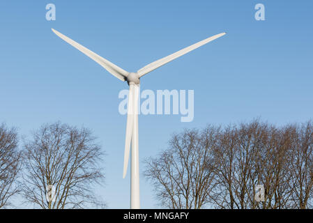 A wind turbine is standing between the trees on a sunny day with a blue sky in the background. - Stock Photo