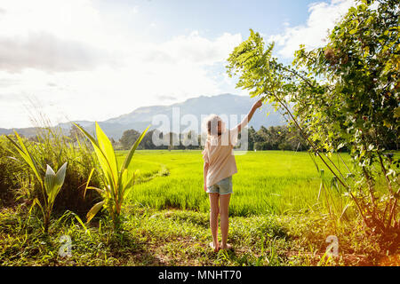 Adorable girl enjoying beautiful evening walk in rice fields in Sri Lanka - Stock Photo