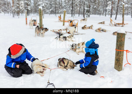 Adorable little girl and cute boy outdoors on beautiful winter day having fun playing in snow with husky - Stock Photo