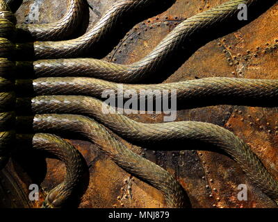 Detail of the serpent door from Harry Potters chamber of secrets, Warner Bros studios, Leavesdon, UK - Stock Photo