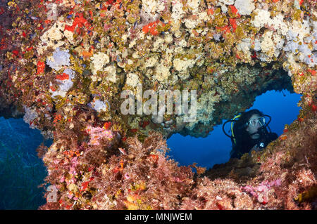 Female scuba diver framed in an underwater window of a colorful reef full of marine life at Ses Salines Natural Park(Formentera,Balearic Islands,Spain - Stock Photo