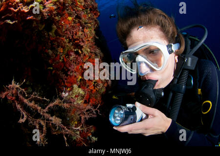 Underwater view with a female scuba diver watching a pilgrim hervia (Cratena peregrina) at Ses Salines Natural Park(Formentera,Balearic Islands,Spain) - Stock Photo