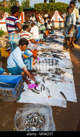 Roadside market for freshly caught local river fish near Thanjavur, formerly Tanjore, a city in the south Indian state of Tamil Nadu, India - Stock Photo