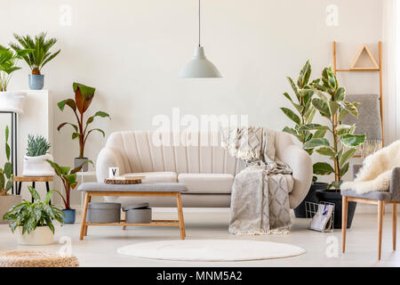 Blanket on beige settee under grey lamp in floral living room interior with plants and chair. Real photo - Stock Photo