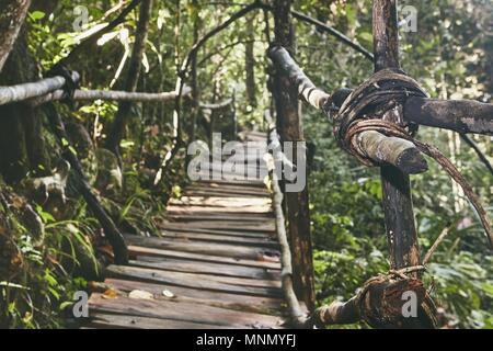 Old elevated walkway through jungle. Rainforest in Sri Lanka. - Stock Photo