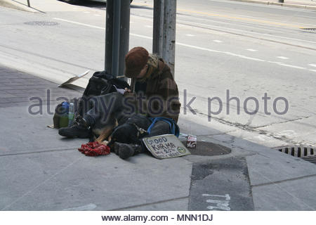 A homeless woman and her dog sit on the sidewalk in downtown Toronto. - Stock Photo