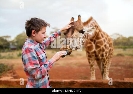 Young teenage boy feeding giraffes in Africa - Stock Photo