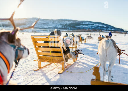 Teenage boy and his family sledding at reindeer safari on sunny winter day in Northern Norway - Stock Photo