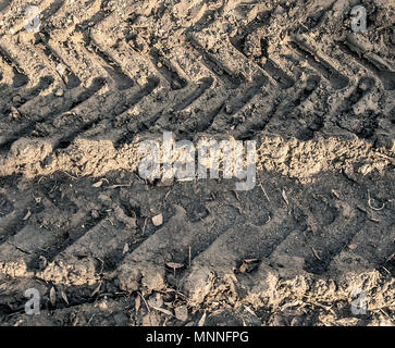 tyre prints in the mud - Stock Photo